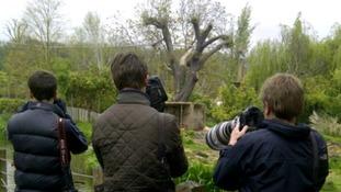 photographers at Bristol Zoo