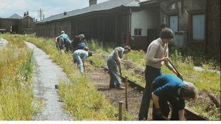 Volunteers at site