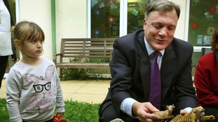 Ed Balls launched Labours new childcare policy this morning as the party looks set to abandon the high speed 2 railway project