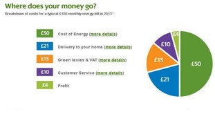 This graphic shows the breakdown of a typical £100 monthly energy bill this year.