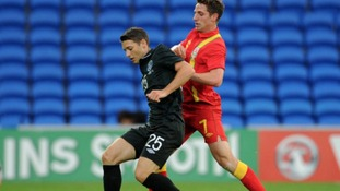 Wes Hoolahan will be hoping to make an impact for his country