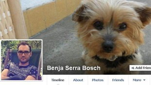 Benjamin Serra's Bosch's Facebook post went viral.
