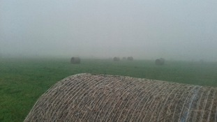 mist over a field in Pye Green