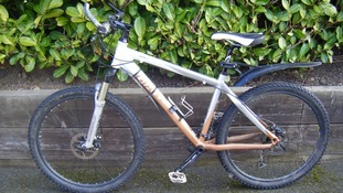 This Giant Arete bike was one of five stolen.