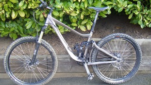 The bikes, including this Giant Trance, were stolen from the couple's garage.