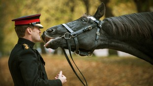 'Goodbye Kiss' by Sgt Adrian Harlen RLC
