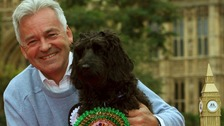 MP Alan Duncan with his cockapoo Noodle