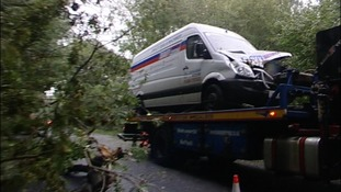 A van driver had a lucky escape after high winds blew down a tree across the A12 in Suffolk.