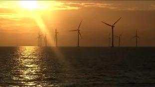 Renewable hub considered