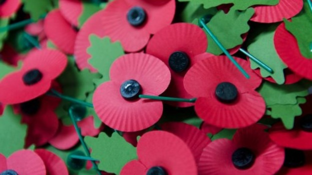 Fascinating facts about poppies calendar itv news fascinating facts about poppies mightylinksfo