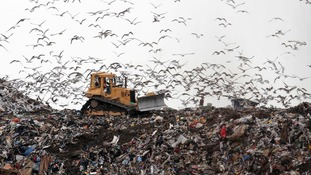 15 million tonnes of food ends up in a landfill or being recycled every year