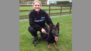PC Suzanne Cheek with her dog, PD King