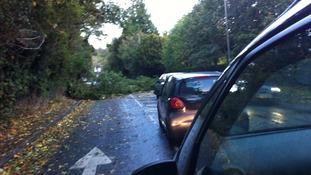 Tree down blocking Reigate Hill in Surrey