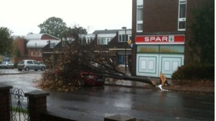 A tree falls onto a car in Bury St Edmunds, Suffolk. Luckily no one was injured.