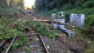 A tree has knocked over a signal point near Fareham, Hampshire