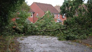 A scene of devastation in Kelsale-cum-Carlton, Suffolk.