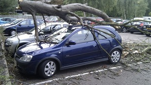 A tree causes damage in one of our region's car parks.