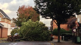 A tree falls blocking a road in Beckton.