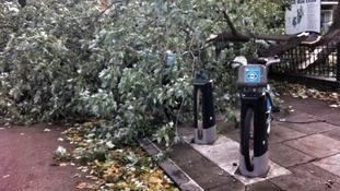 A tree lies across a 'Boris Bike' docking station in London