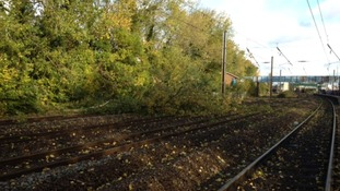 A tree that fell onto the line at Hatfield cause problems between Peterborough and Kings Cross.