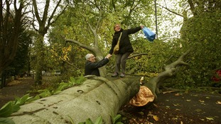 A woman is helped over a fallen tree lying across the road in Shepherd's Hill.