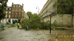 Workers cordon off part of a road in central London where a tree has fallen