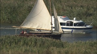 The Norfolk and Suffolk Broads are rich environment for wildlife