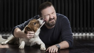 Ricky Gervais getting licked by a dog