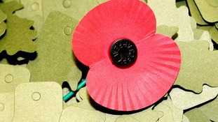 The annual Poppy Appeal raises cash for the Royal British Legion