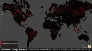 Red areas show forest loss 2000-2012