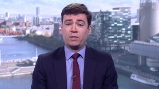 Shadow health secretary Andy Burnham said he wanted reassurances that a Government-backed inquiry was not a 'political call'.