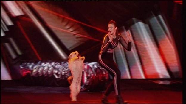 Britain's Got Talent winners Ashleigh and Pudsey performing in the final