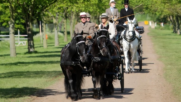 Duke of Edinburgh carriage riding