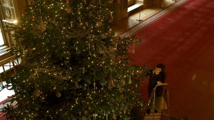 Roxy Hackett applies the finishing touches to a six-metre Nordman Fir Christmas tree in the St George's Hall