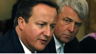 Prime Minister David Cameron supports Health Secretary Andrew Lansley's reforms