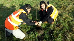 Two young men from AMYA plant a tree
