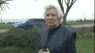 Barbara Herve witnessed the incident.