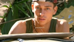 Joey Essex compares a stick insect to an actual stick.