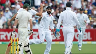 Monty Panesar celebrates dismissing Steven Smith.