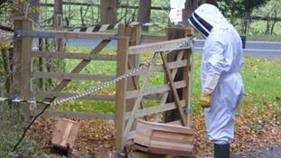 A volunteer keeper surveys the damage
