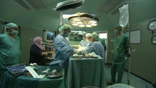 Kidney transplants in Gaza