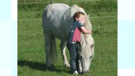 Parents plea for son's pony to be returned