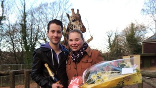 Getting hitched: Dean Wood and Katherine Spooner, with one of the giraffes who played a role in the proposal
