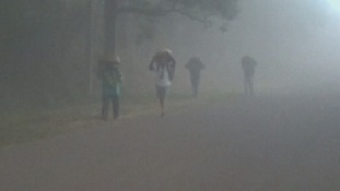 People walking on road as they attempt to protect themselves from the volcanic ash