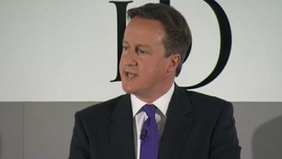Cameron called for help from other European leadersD