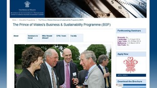 The website for the Cambridge Programme for Sustainability Leadership