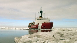 All 52 passengers rescued from ship trapped in Antarctic
