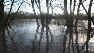 Kingsbury Water Park, North Warwickshire