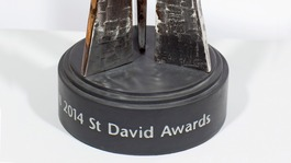 Finalists of first ever St David Awards unveiled in Cardiff