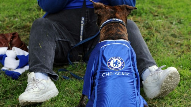 Dog 'Roxy' before before the FA Cup and UEFA Champions League trophy parade in London
